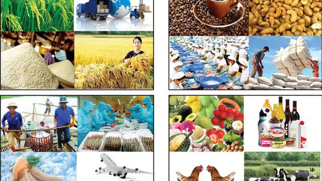 Bộ Công Thương cảnh báo về xuất khẩu nông sản sang Trung Quốc - Ảnh 1.