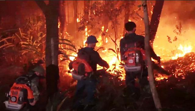 Cháy rừng diễn biến phức tạp ở Diễn Châu, Nghệ An - Ảnh 3.