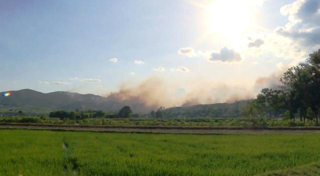 Cháy rừng diễn biến phức tạp ở Diễn Châu, Nghệ An - Ảnh 1.
