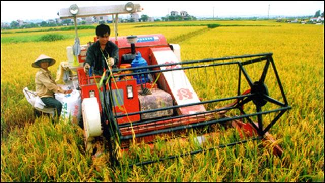 Kinh tế Việt Nam 6 tháng đầu năm: Nông nghiệp là trụ đỡ, thị trường nội địa là điểm tựa - ảnh 3