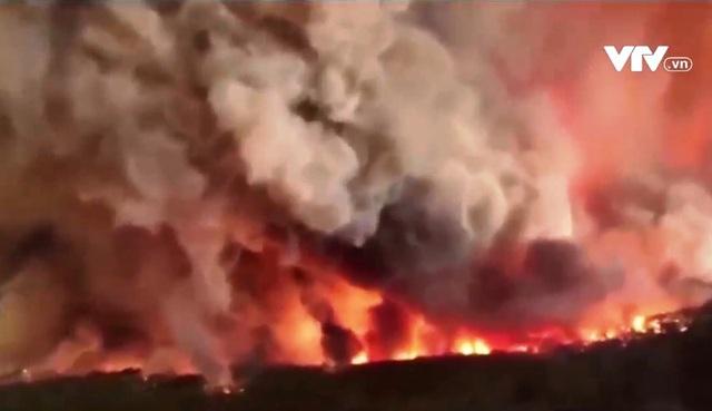 Hạn hán, cháy rừng và siêu bão: Đã đến lúc con người phải chăm sóc thiên nhiên! - Ảnh 3.