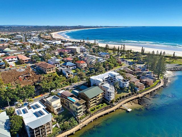 Bị cá mập trắng khủng tấn công, người lướt ván thiệt mạng tại bờ biển Australia - Ảnh 1.