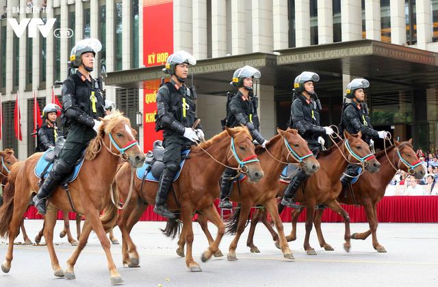 Đội tuấn mã của lực lượng Cảnh sát cơ động Kỵ binh: Nhỏ mà có võ - Ảnh 2.