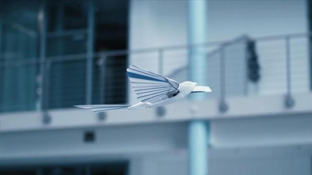 Đức phát triển robot bay được như chim - Ảnh 2.