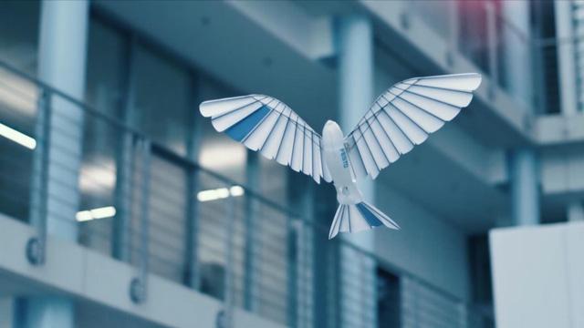 Đức phát triển robot bay được như chim - Ảnh 1.