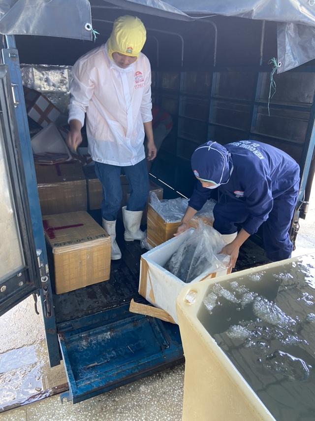 Kiên Giang: Phát hiện cơ sở đang đưa tạp chất vào tôm nguyên liệu - Ảnh 2.