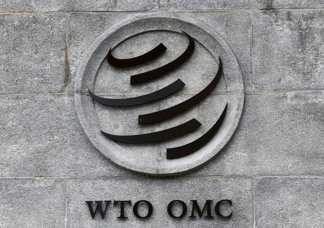 Cuộc đua vị trí Tổng giám đốc WTO chính thức bắt đầu - Ảnh 1.