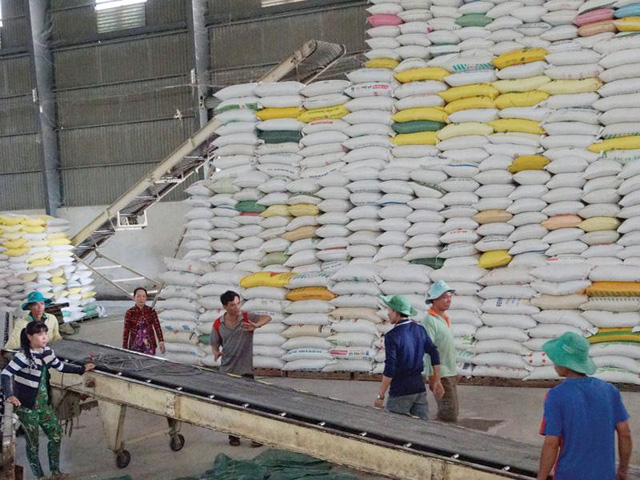 Xuất khẩu gạo đạt 1,9 tỷ USD sau 8 tháng đầu năm 2020 - Ảnh 1.
