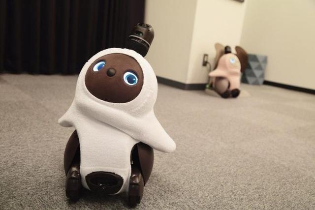 Lovot - Robot có cảm xúc, thay thế thú cưng trong nhà - Ảnh 1.