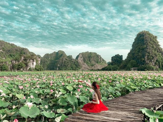 Hồ sen Hang Múa thu hút khách du lịch - Ảnh 2.