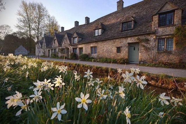 Ngất ngây, 10 cánh đồng hoa đẹp nhất thế giới - ảnh 5