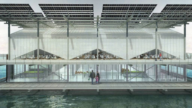 Ghé thăm trang trại gà khổng lồ trên nước tại Hà Lan - ảnh 1