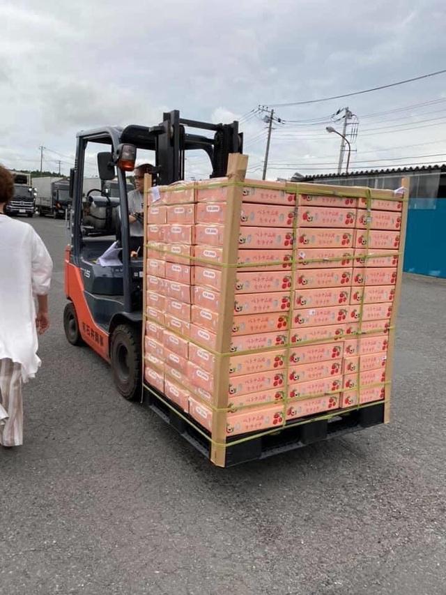 Vải thiều Việt vượt biển tới Nhật Bản, giá 200.000/kg - Ảnh 1.
