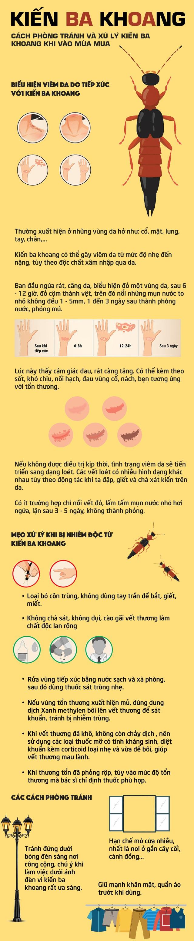 [INFOGRAPHIC] Mẹo phòng tránh và xử trí kiến ba khoang khi vào mùa mưa - Ảnh 1.