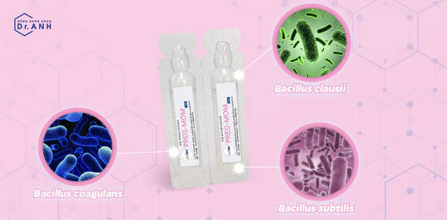 Sự thật về tác dụng của 3 chủng lợi khuẩn  Bacillus subtilis, Bacillus coagulans và Bacillus clausii - Ảnh 2.