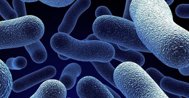 Cách chọn đúng men vi sinh chất lượng, hiệu quả, an toàn cho người viêm đại tràng - Ảnh 1.