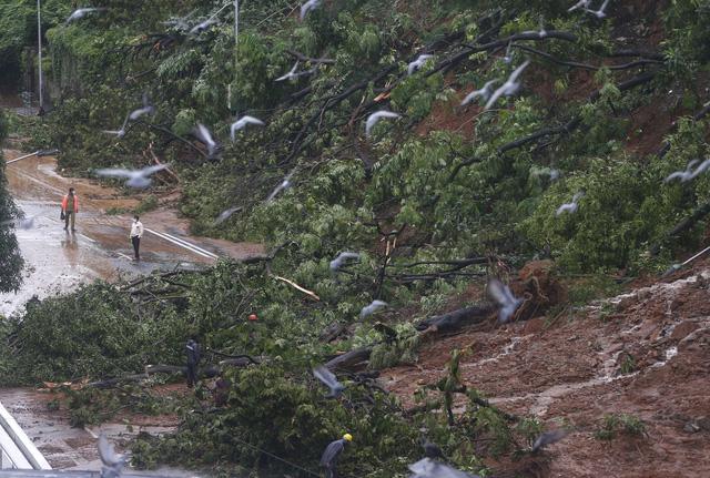 Mưa lớn gây lở đất tại Ấn Độ, hàng chục công nhân trồng chè thiệt mạng trong đêm - Ảnh 1.