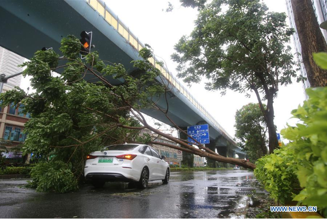 Bão Mekkhala đổ bộ vào miền Đông Trung Quốc, gây mưa to gió lớn - Ảnh 3.