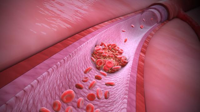 Nguy cơ COVID-19 tác động lâu dài đến sức khỏe con người - Ảnh 5.