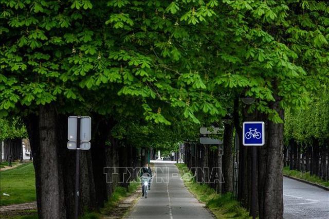 Nhanh, tiện lợi, trào lưu đi xe đạp nở rộ tại Paris - Ảnh 1.