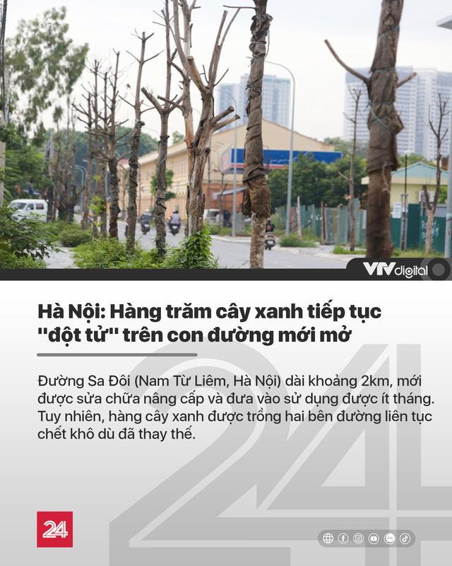 Tin nóng đầu ngày 15/8: Hàng trăm cây xanh tiếp tục đột tử trên con đường mới mở ở Hà Nội - Ảnh 1.