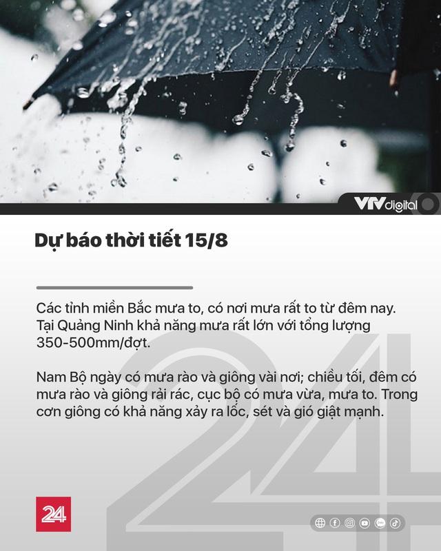 Tin nóng đầu ngày 15/8: Hàng trăm cây xanh tiếp tục đột tử trên con đường mới mở ở Hà Nội - Ảnh 13.