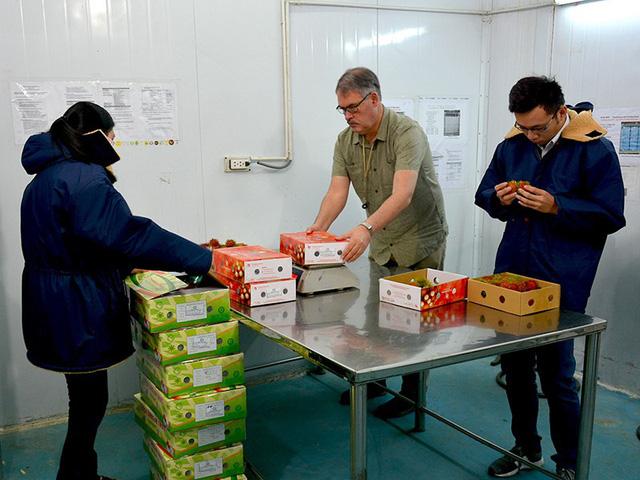 Gỡ khó cho trái cây Việt xuất khẩu sang Mỹ - Ảnh 1.