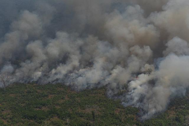 Hơn 6.800 vụ cháy rừng Amazon diễn ra trong tháng 7/2020 - Ảnh 1.