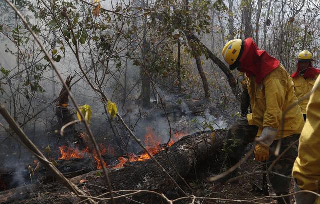 Hơn 6.800 vụ cháy rừng Amazon diễn ra trong tháng 7/2020 - Ảnh 2.