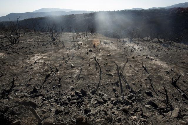 Cháy rừng lan rộng tại California (Mỹ), hàng nghìn người phải sơ tán - Ảnh 3.