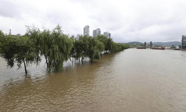 Mưa lớn gây ngập lụt nghiêm trọng tại Hàn Quốc - Ảnh 2.