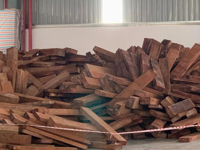 Bắt giữ 60 container gỗ quý nhập khẩu về TP. Hồ Chí Minh - Ảnh 1.