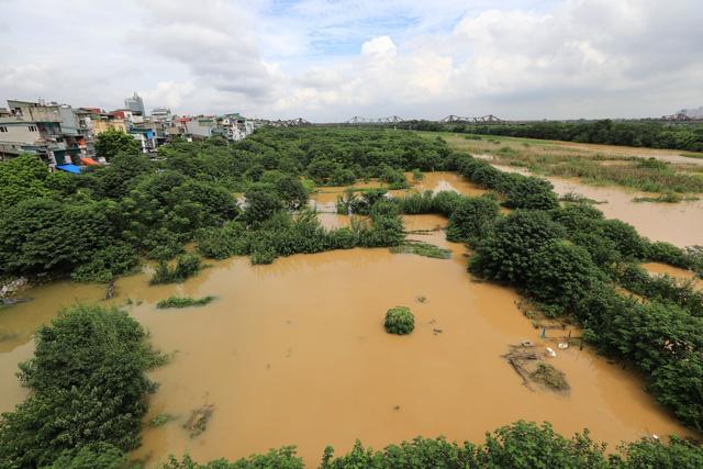 Mực nước sông Hồng lên nhanh, nguy cơ ngập lụt vùng trũng và bãi bồi - Ảnh 5.