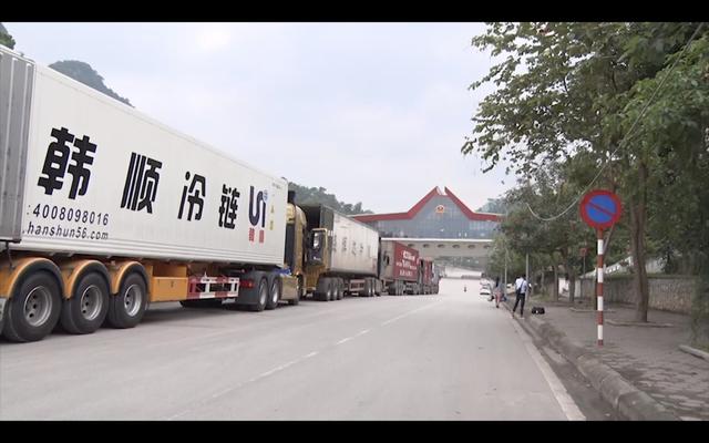 Kim ngạch xuất nhập khẩu của Lạng sơn giảm vì COVID-19 - Ảnh 2.