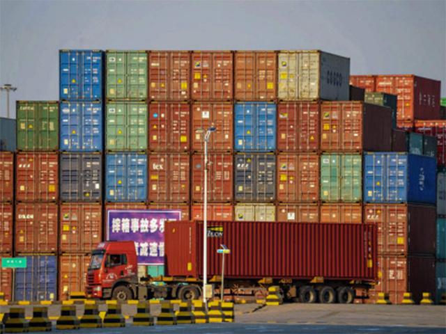 Ấn Độ xem xét tăng hàng rào đối với hàng hóa từ Đông Nam Á - ảnh 1