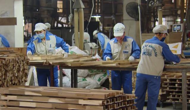 Tháo gỡ khó khăn cho doanh nghiệp xuất khẩu gỗ - Ảnh 1.