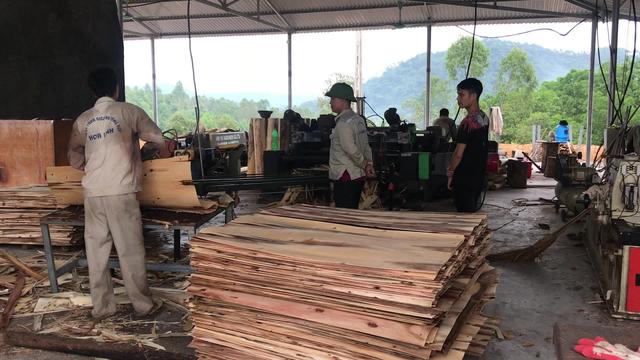 Tháo gỡ khó khăn cho doanh nghiệp xuất khẩu gỗ - Ảnh 2.