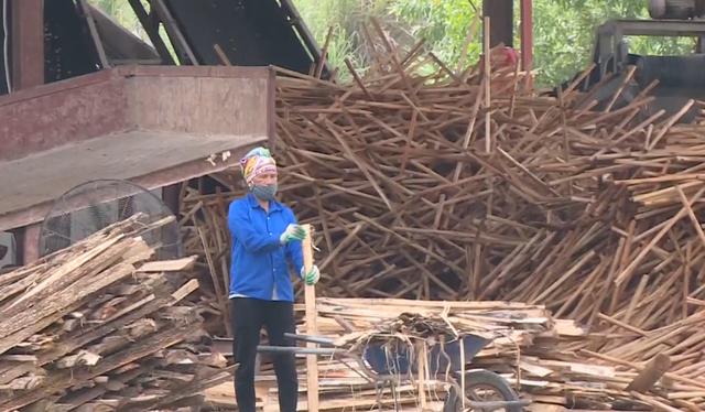 Đề xuất giảm 2% thuế dăm gỗ xuất khẩu để tháo gỡ khó khăn - Ảnh 2.