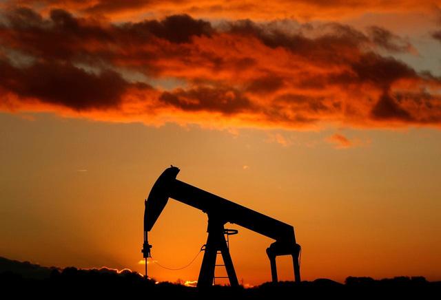IEA và OPEC hạ dự báo nhu cầu dầu thế giới năm 2020 - ảnh 1