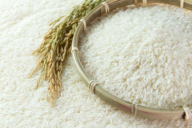 Xuất khẩu lô gạo đầu tiên vào EU theo EVFTA - ảnh 1