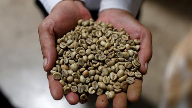 Vượt Brazil, cà phê Việt lên ngôi tại Nhật Bản - Ảnh 2.