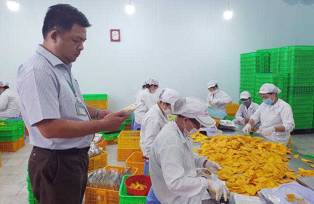 Xử lý nghiêm vi phạm về an toàn thực phẩm Tết Trung thu - Ảnh 1.