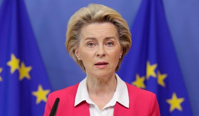 EU muốn chấm dứt chương trình Thị thực vàng - Ảnh 1.