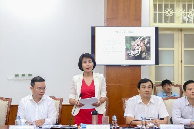 Linh vật và logo của SEA Games 31 tại Việt Nam sắp được công bố chính thức - Ảnh 2.