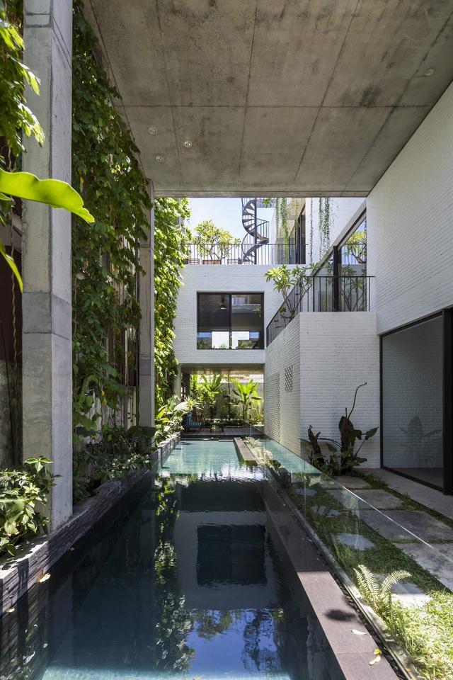 2 công trình của Kiến trúc sư Võ Trọng Nghĩa giành giải thưởng kiến trúc xanh - Ảnh 2.