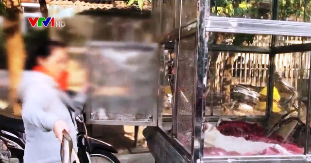 Nhiều nhà hàng vẫn ngang nhiên bán thịt động vật hoang dã - Ảnh 2.