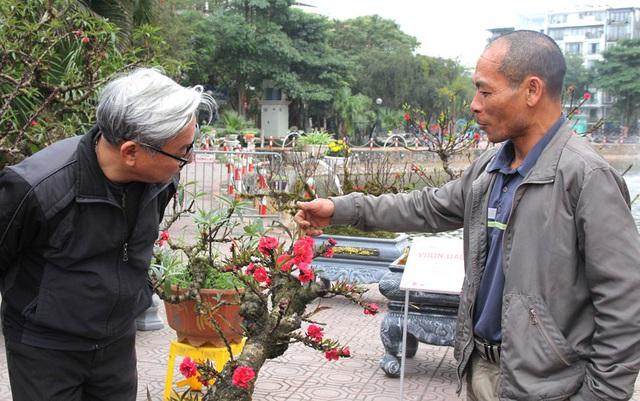 Không khí Tết ngập tràn tại Lễ hội hoa đào Nhật Tân - Ảnh 2.