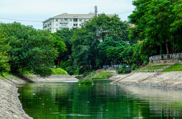 Sông Tô Lịch bất ngờ xanh, nhiều người dân vui mừng bắt hàng tạ cá - Ảnh 2.