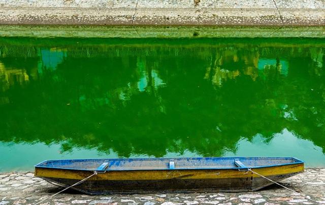 Sông Tô Lịch bất ngờ xanh, nhiều người dân vui mừng bắt hàng tạ cá - Ảnh 3.