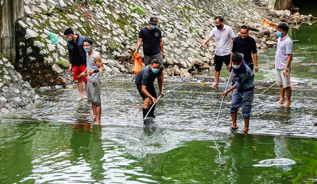 Sông Tô Lịch bất ngờ xanh, nhiều người dân vui mừng bắt hàng tạ cá - Ảnh 5.